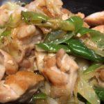 ダシダと鶏肉とネギと塩コショウで、焼き鳥。