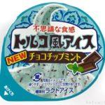 ファミマの『トルコ風アイス チョコチップミント』が爽やかで美味しい!