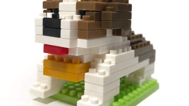 ダイソーの『セントバーナード(プチブロック)』がずっしり大きい!