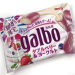 明治の『ガルボ ダブルベリー&ヨーグルト』が超おいしい!