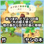 あつ森の『木の植え替え』で他の島から木を移植して自分の島に持ってくる!