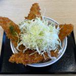 かつやの『タレカツ丼』が、はみ出るデカさにダシの味で超おいしい!