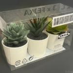 IKEAの『FEJKA フェイカ』が3個セットの人工観葉植物が鉢付きでリアル!